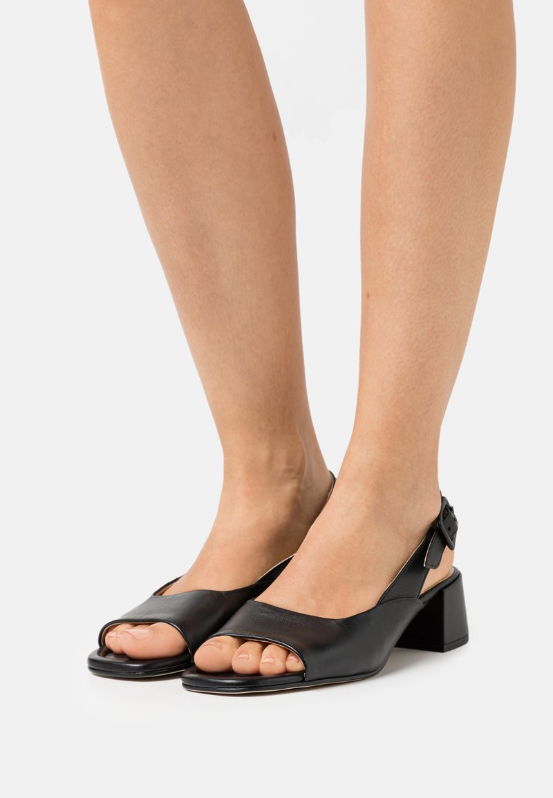 Högl - LUISA - Sandals - schwarz