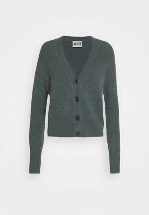 REBELO CARIDGAN - Cardigan - balsam green