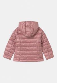 Blauer - GIUBBINI CORTI IMBOTTITO PIUMA - Down jacket - light pink - 1