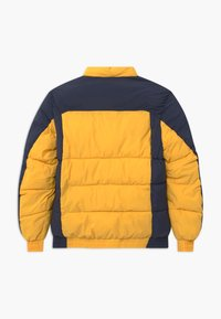 Jack & Jones Junior - JORSPECTOR PUFFER - Zimní bunda - spicy mustard - 1