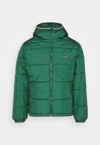 adidas Originals - HOODED PUFF - Veste d'hiver - green - 0