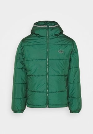 HOODED PUFF - Winterjas - green