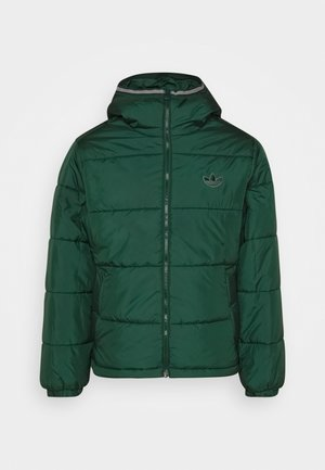 HOODED PUFF - Winter jacket - green