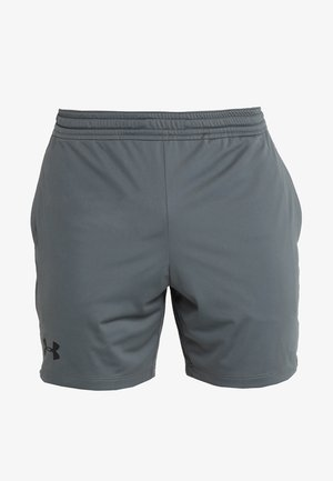 HEATGEAR RAID  - Korte broeken - pitch gray/black