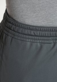 Under Armour - HEATGEAR RAID  - Sports shorts - pitch gray/black - 3