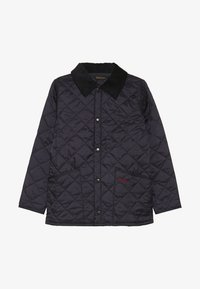 Barbour - LIDDESDALE - Winter jacket - blue