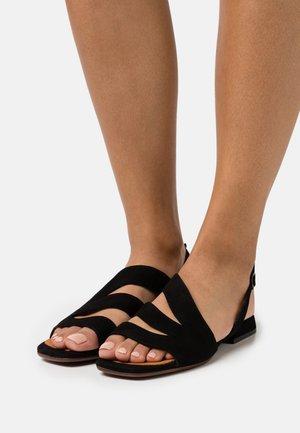 TEDAN - Sandalen - black