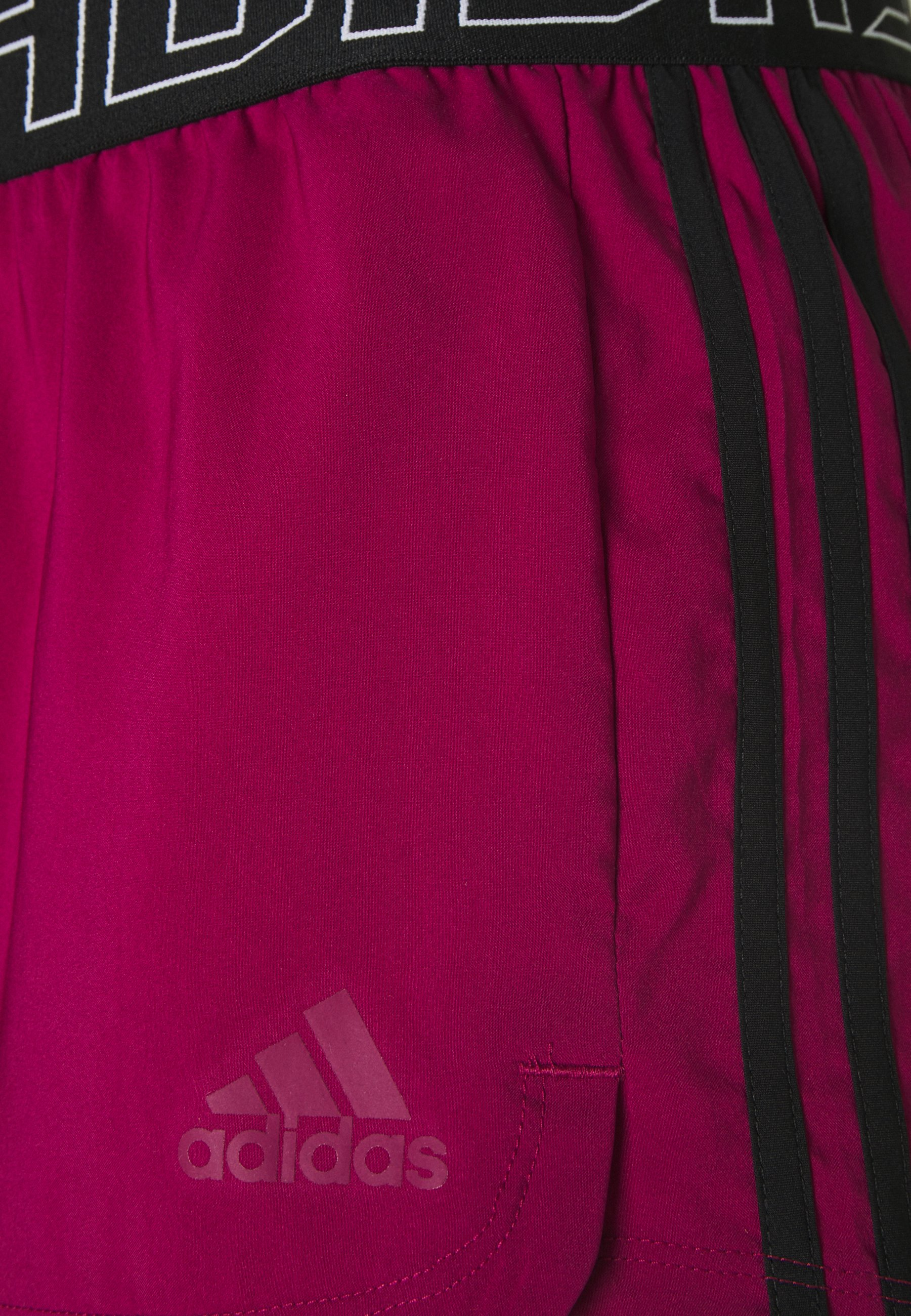 adidas Performance PACER - Sports shorts - powber ZNOsx