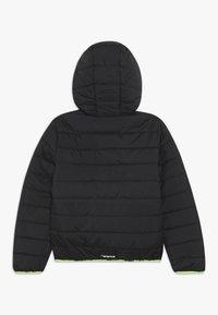Icepeak - KLINE - Winter jacket - anthracite - 1