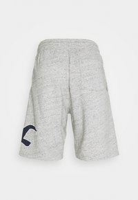 Hollister Co. - EXPLODED ICON - Shorts - grey - 7