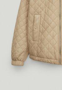 Massimo Dutti - Leather jacket - beige - 6