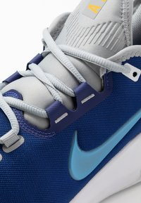 Nike Performance - COURT AIR MAX WILDCARD CLAY - Clay court tennis shoes - deep royal blue/coast/white - 5