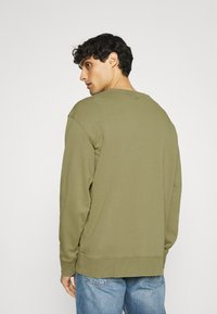 Selected Homme - SLHRELAXLUIS - Mikina - aloe - 2