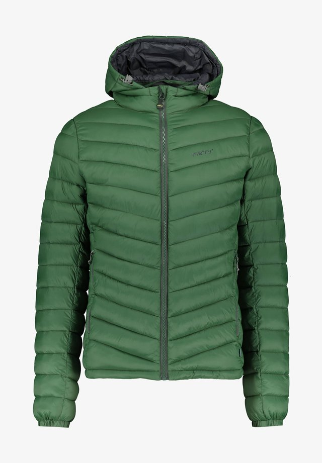 DARGAVILLE 2-IN-1 - Winter jacket - grün
