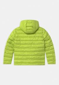 Blauer - GIUBBINI CORTI IMBOTTITO OVATTA - Winter jacket - light green - 1