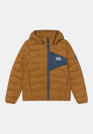 JORI UNISEX - Winter jacket - brown