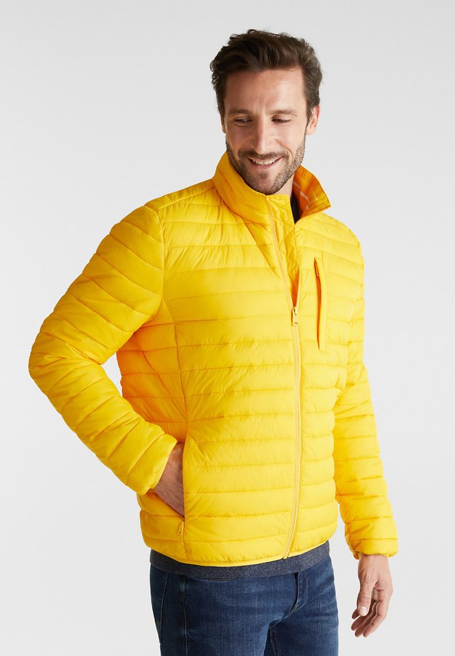 RECTHINS  - Winter jacket - yellow