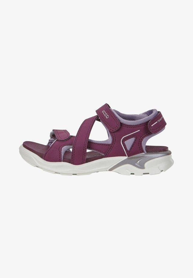 ECCO BIOM RAFT - Walking sandals - aubergine