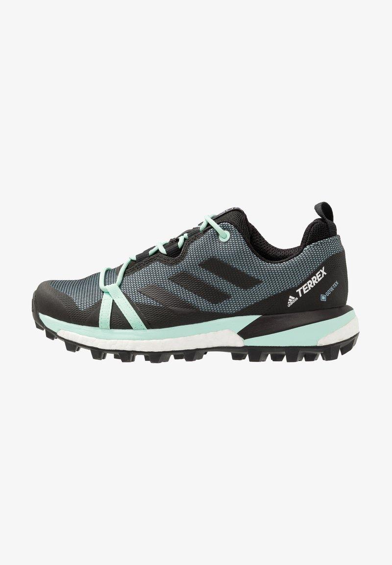 adidas Performance - TERREX SKYCHASER LT GTX - Chaussures de marche - ash grey/core black/clear mint