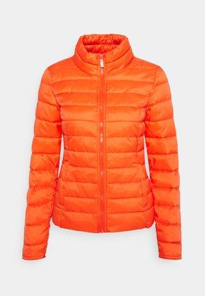 Light jacket - koi