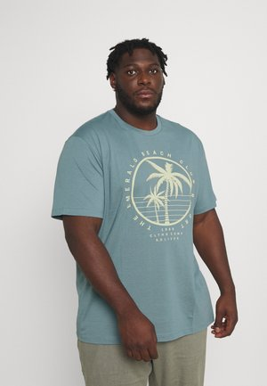 T-shirt con stampa - frosty blue