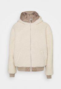 Hollister Co. - REVERSIBLE - Winter jacket - grey - 2