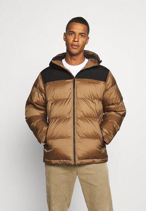 LARSEN JACKET - Winter jacket - hamilton brown/black