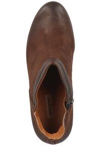 Paul Green - STIEFELETTE - High heeled ankle boots - dunkelbraun - 1