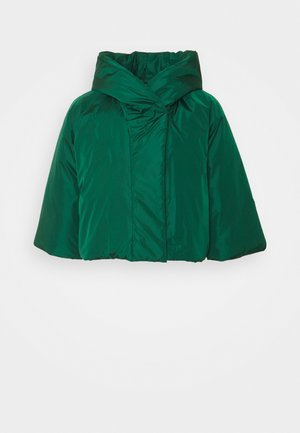 JACKET - Winter jacket - pine green