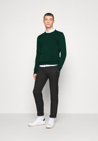 Tommy Hilfiger - TONAL AUTOGRAPH - Pullover - green - 1