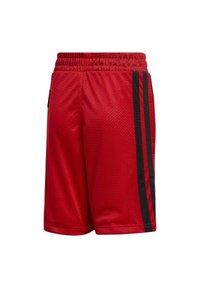 adidas Performance - Sports shorts - scarle - 1