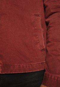 New Look - UTLITY  - Kurtka jeansowa - dark burgundy - 5