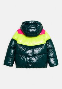 Icepeak - LAMONI UNISEX - Snowboard jacket - antique green - 1