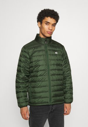 PRESIDIO PACKABLE JACKET - Chaqueta de plumas - python green