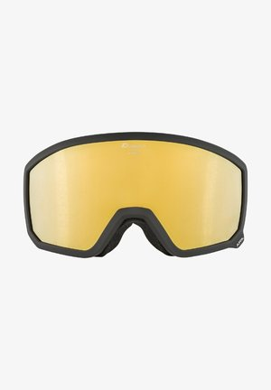Ski goggles - black-grey (a7249.x.28)