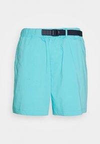 Tommy Jeans - BELTED BEACH  - Shortsit - blue - 0