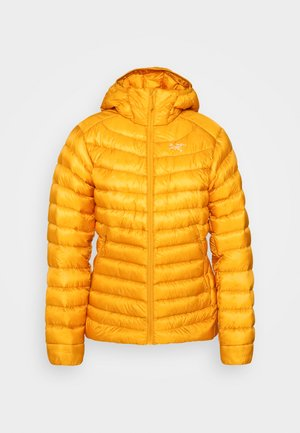 CERIUM HOODY WOMEN'S - Down jacket - quantum