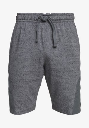PROJECT ROCK SHORT - Pantalón corto de deporte - pitch gray full heather/black