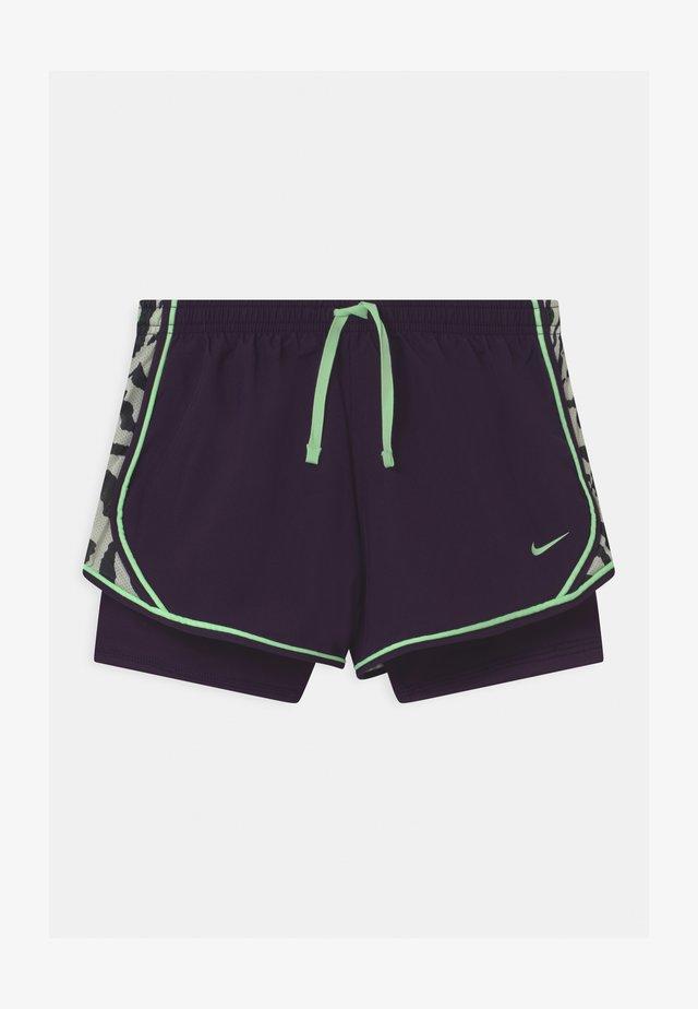 DRY TEMPO  - Pantaloncini sportivi - grand purple/vapor green
