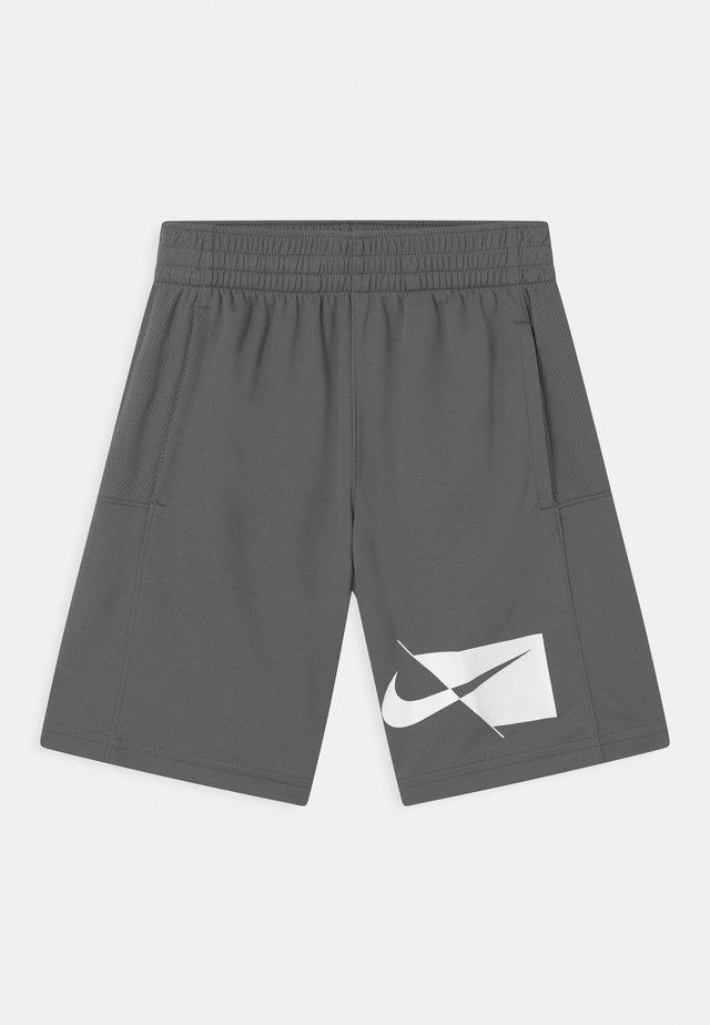 Short de sport - smoke grey/white