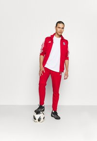 adidas Performance - FC BAYERN MÜNCHEN - Squadra - true red - 1