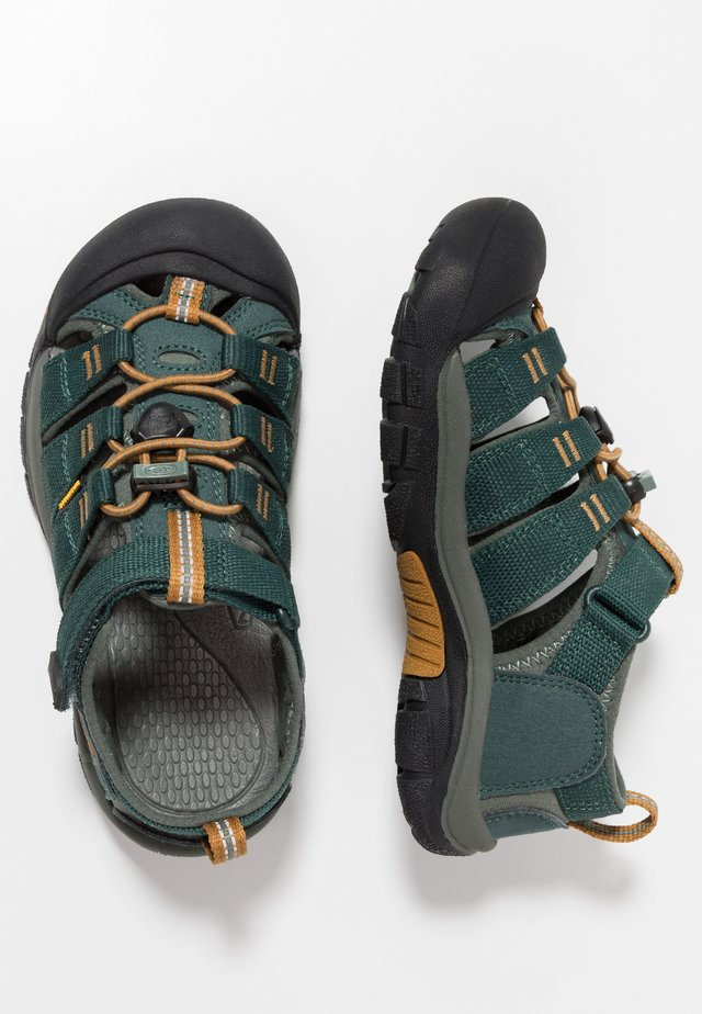 NEWPORT H2 - Outdoorsandalen - green gables/wood thrush