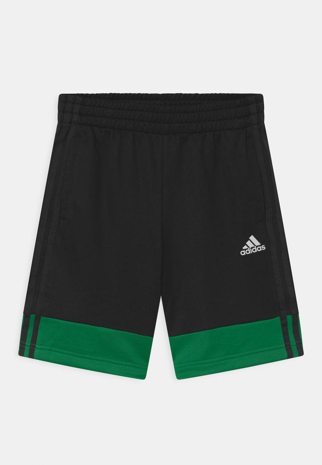 UNISEX - Pantaloncini sportivi - black/green