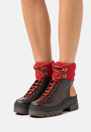 CASSIDIE - Platform ankle boots - dark brown