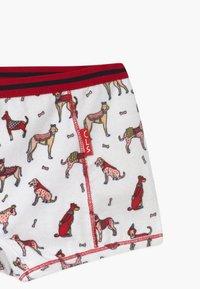 Claesen's - GIRLS 2 PACK - Pants - pink/bordeaux - 3