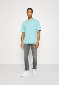 9N1M SENSE - PUFFER FISH - Print T-shirt - aruba blue - 1