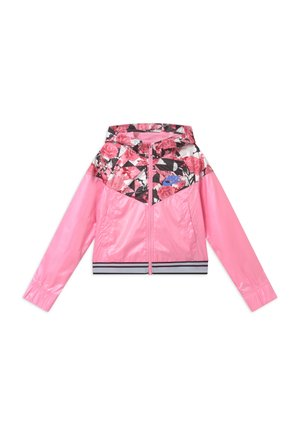 WINDRUNNER - Training jacket - pink/royal pulse