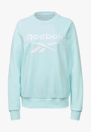 FRENCH TERRY BIG LOGO SWEATSHIRT - Sweatshirt - blue