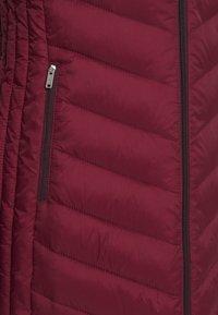 Hollister Co. - Winter coat - burgundy - 6