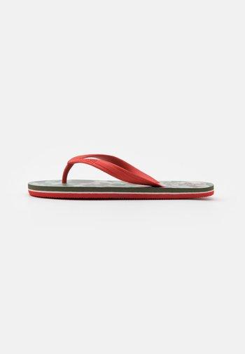 SOUTH BEACH UNISEX - Pool shoes - khaki